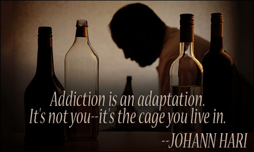 Quotes About Addiction Entrancing Addiction Quotes