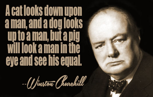 Winston Churchill Quotes Ii