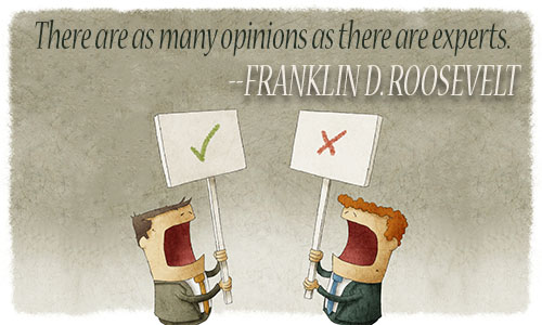 opinion quote