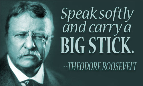 Theodore Roosevelt Quotes Enchanting Theodore Roosevelt Quotes