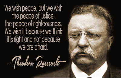 Teddy Roosevelt Quotes Amazing Theodore Roosevelt Quotes