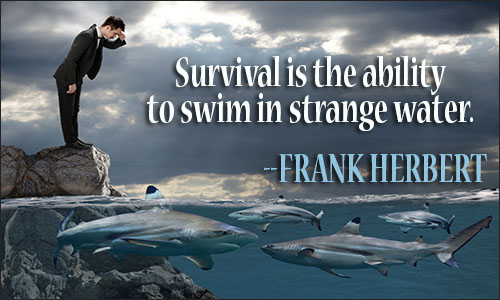 Survival Quotes Classy Survival Quotes